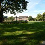 Grün- und Baumbestand im Stadtpark